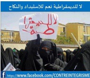 Le printemps arabe,  aspiration populaire ou complot?1 democr-300x260